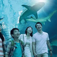 Read more about RWS 44% OFF S.E.A. Aquarium & Adventure Cove Waterpark Promo 18 Aug - 30 Nov 2014