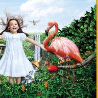 Read more about Jurong Bird Park 49% OFF Admission Ticket Coupon Promo 7 Jul - 31 Aug 2014