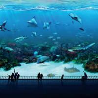 Read more about RWS 1 For 1 S.E.A. Aquarium & Adventure Cove Promo 1 Aug - 31 Dec 2014