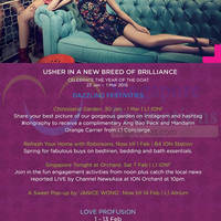 Read more about ION Orchard New Breed of Brilliance Promotions & Activities 23 Jan - 1 Mar 2015