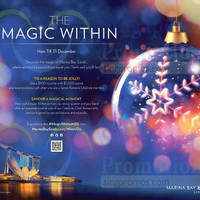 Read more about Marina Bay Sands Experience the Magic Promotions & Activities 16 Nov - 31 Dec 2015