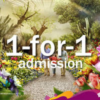 Enjoy buy 1 get 1 free (1-FOR-1) admission for the first 55 tickets to two conservatories per day, specially with NTUC membership cards