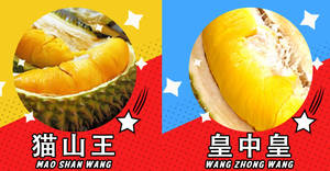 You can now get fresh Mao Shan Wang & other variety durians delivered to your doorstep