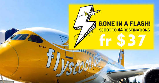 Scoot 31 Aug 2017