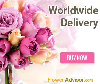 FlowerAdvisor 7 Nov 2013