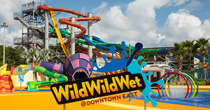 Featured image for Wild Wild Wet: Enjoy 54% Off 4 Day Passes with this NDP coupon valid from 1 – 31 Aug 2019