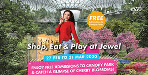 Jewel Changi Airport: Enjoy free admission to Canopy Park and catch a glimpse of Cherry Blossoms till 31 March 2020
