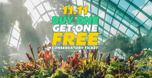 Featured image for Gardens by the Bay: 1-for-1 One Conservatory Weekday Tickets for visits up to 3 Dec on 11 Nov 2020