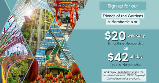 Featured image for Gardens by the Bay: $20 for 6-month unlimited weekday visits & more deals valid till 15 March 2021